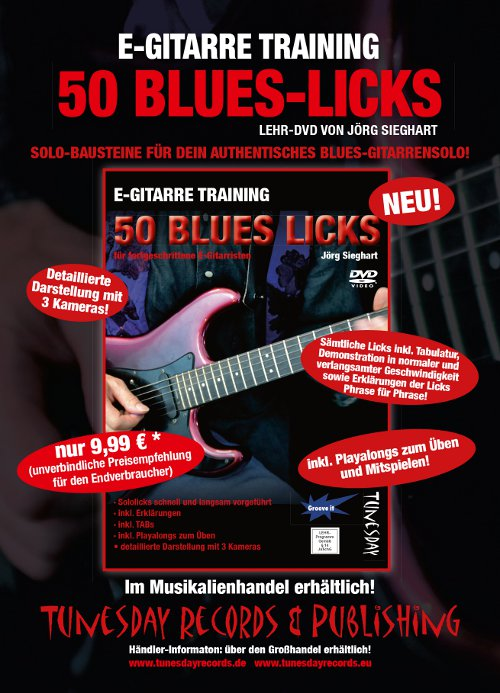 Bluesgitarre-Licks-lernen